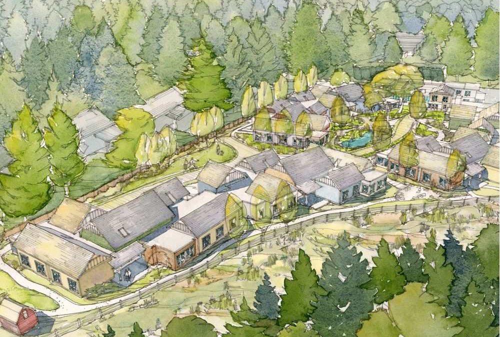 Dementia Village